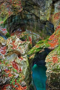 Mostnica Gorge - Slovenia. by leonor