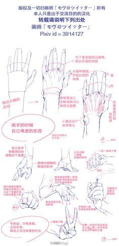 我的首頁 微博-随时随地发现新鲜事@RudyWang采集到手足研究(351图)_花瓣插画