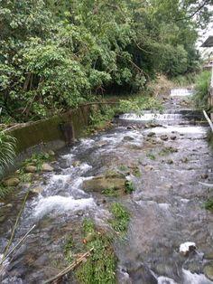 小溪流水,昨晚下了一場,露營以來超大雷雨