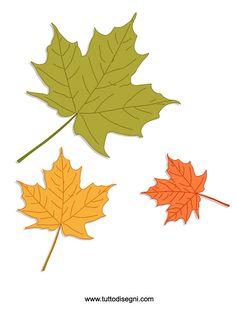 Autunno: foglie colorate - TuttoDisegni.com