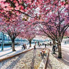 Ahhh, Paris! <3