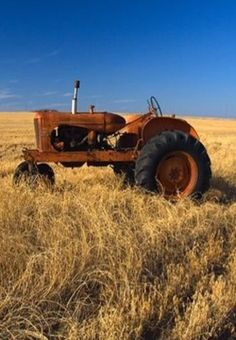 Old Tractor Sitting In Field