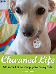 Make your own dog tag with sculpey oven-bake clay! Cuuuuute!