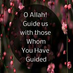 May Allah show us the right path. Ameen!