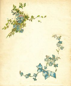 Antique Images: forget me not