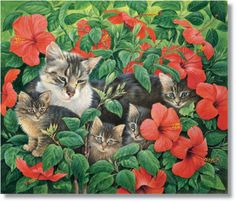 I ❤ kitties  . . . Mother and Kittens. Exploring the Hibiscus- Lesley Anne Ivory Cats