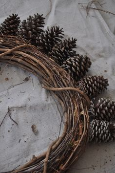 DIY Pine Cone Wreath--Probably cheaper to use a Styrofoam wreath as a base. Pine Cone Art, Pine Cone Crafts, Pine Cones, Fall Wreaths, Christmas Wreaths, Christmas Crafts, Fall Crafts, Decor Crafts, Vine Wreath