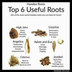 Top 6 useful roots, hoodoo magick Hoodoo Spells, Magick Spells, Luck Spells, Blood Magick, Magick Book, Gypsy Spells, Wicca Witchcraft, Candle Spells, Candle Magic
