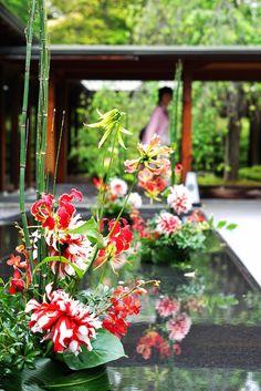 #tokugawaen#novarese#vressetrose#Wedding #japanese #main table #table #Flower #entrance#welcomespace#maintable#Bridal#徳川園# ブレスエットロゼ #ウエディング# 和風 #和装 # お迎え花#エントランス#祭壇 # 花#ウェルカムスペース#ブライダル#結婚式#ナチュラル#ブレスエットロゼ名古屋#和#ダリア#竹#トクサ