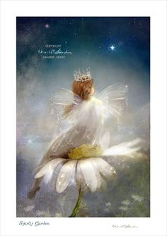 Starlit Garden - Fairy Print Mounted or unmounted or two sizes of plaques or notebook to choose from-All  signed  By Charlotte Bird