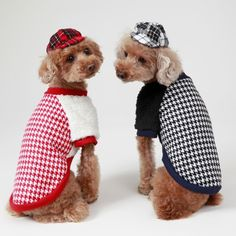 Best Dog Cloths, Pleasant Doggy check hoody jumper for your lovely pet dogs @ https://www.gokoco.com/gkc/pet-supplies-pet-accesories/pets-clothing/best-dog-cloths-pleasant-doggy-check-hoody-jumper-for-your-lovely-pet-dogs.html #bestdogcloths #petaccessories #stylishclothesforpets