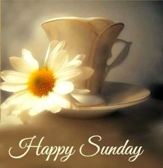 Discover recipes, home ideas, style inspiration and other ideas to try. Morning Wishes For Lover, Good Day Wishes, Sunday Morning Quotes, Sunday Wishes, Happy Sunday Morning, Happy Sunday Quotes, Blessed Sunday, Morning Greetings Quotes, Good Morning Greetings