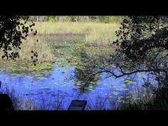 Deer Lake State Park.