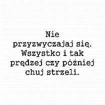 Stylowi.pl - Odkrywaj, kolekcjonuj, kupuj Polish Sayings, Math Equations, Humor, Animals, Poster, Animales, Humour, Animaux, Moon Moon