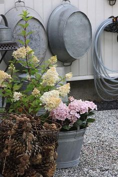 Galvanized buckets in the garden