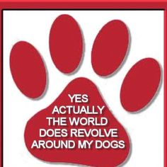 the world revolves around my dogs