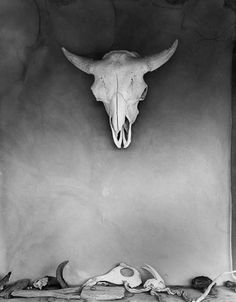 Todd Webb: Cow Skull, O'Keeffe's Abiquiu House, New Mexico, 1960.