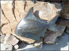 Fishy... under King Neptune statue Virginia Beach BoardWalk