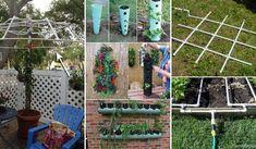 I primi 20 progetti a basso costo di giardinaggio fai da te realizzati con tubi in PVC