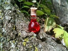 Red Health Potion Charm