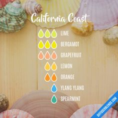 California Coast - Essential Oil Diffuser Blend Liquid Castile Soap, Glycerin Soap, Essential Oil Diffuser Blends, Essential Oils, Reed Diffuser Sticks, Soap Base, Vegetable Glycerin, Fractionated Coconut Oil, Drying Herbs