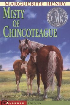"""""""Usually a colt learns from its mother. With Phantom and Misty, things happened the other way around."""" - Misty of Chincoteague by Marguerite Henry Horse Movies, Horse Books, Animal Books, Marguerite Henry, Books To Read, My Books, Horse Story, Chincoteague Ponies, Chincoteague Island"""