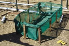 Build A Wicking Bed