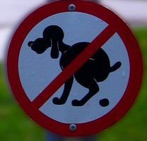 How to Start a Pet Waste Removal Business