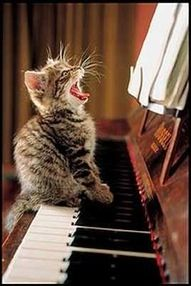 I know you don't like cats, but I thought this was cute.  He's just a-singing away!