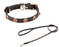 Gold Sand Stone Pebbies Collar- Collars, Leads & Harnesses - Collars Posh… Fancy Dog Collars, Puppy Collars, Gold Sand, Designer Dog Clothes, Belly Bands, Dog Design, Pet Toys, Dogs And Puppies, Stone