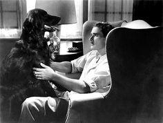 Errol Flynn plus dog- both handsome!