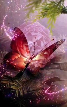 Beautiful Flowers Pictures, Beautiful Flowers Wallpapers, Beautiful Rose Flowers, Beautiful Gif, Flower Pictures, Beautiful Butterflies, Beautiful Fantasy Art, Wallpaper Nature Flowers, Rose Flower Wallpaper