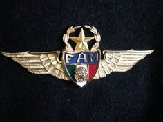 Mexican Air Force                                                  Wings FAM