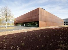 Sports Hall St. Martin / Dietger Wissounig Architekten