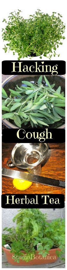 This simple herbal tea recipe soothes that hacking cough that stops us from having a restful sleep. Classic herbal cough remedy!