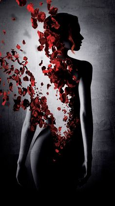 Art Painting Medicilux Killing-me-slowly Sexy Woman Erotic Masterpiece Picture Love Passion Lust New Beautiful Dark Art, Beautiful Roses, Dark Fantasy Art, Fantasy Photography, Creative Photography, Rose Wallpaper, Wallpaper Backgrounds, Iphone Backgrounds, Affinity Photo