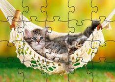 Katzen Puzzle - Ein Spaß für die ganze Familie!