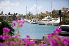 Port St Charles Marina, Barbados