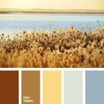 Brown Color Palettes, cold and warm shades, color combination for decoration of premises, color combination for interior decoration, cornflower blue, golden, pale cornflower blue, pastel shades of blue