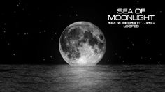 Sea of Moonlight Video Animation   Full HD 1920×1080   Looped   Photo JPEG   Can use for VJ, club, music perfomance, party, concert, presentation   #background #concert #light #loop #moon #moonlight #music #planet #reflection #romance #romantic #sea #star #vj #vjloops