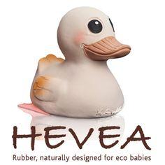 Hevea Baby