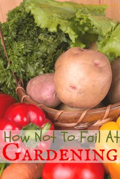 How Not To Fail At Gardening - Thinking about starting your own garden at home? I got tips on how not to fail at gardening that will help you this gardening season.