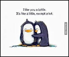 I like you a lottle. Aww thanks Barbara:). I like you a lottle too:) Best Friend Quotes, Me Quotes, Funny Quotes, Qoutes, Quotations, Quotes Pics, I Like You Quotes, Funny Puns, Humor Quotes