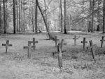 Title: Historic Blakeley State Park, scene of the last major battle of the Civil War, Spanish Fort, Alabama Creator(s): Highsmith, Carol M., 1946-, photographer