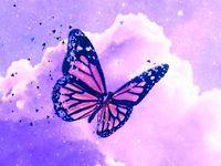 6 Iphone wallpaper pattern ideas in 2021   butterfly wallpaper, butterfly background, purple wallpaper iphone