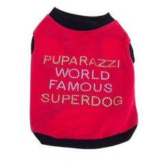 Rotes Hundeshirt mit modischem Spruch auf dem Rücken