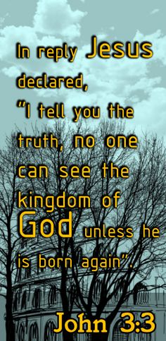 Jesus answered Truly I tell you unless a person is born again he cannot see the kingdom of God. - John 3:3