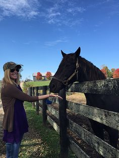 Darley at Old Friends Farm in Kentucky, meeting retired Thoroughbreds