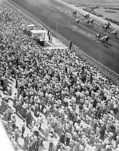 A crowd of 17,991 watch as Bienville, Sure Time and Brown Miracle lead the fourth horse race at Ak-Sar-Ben on May 31, 1956. THE WORLD-HERALD