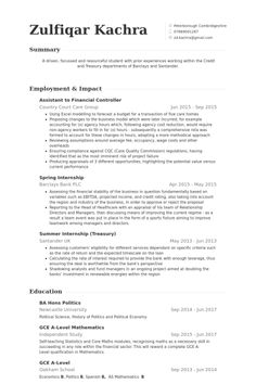 Assistant To Financial Controller Resume Example